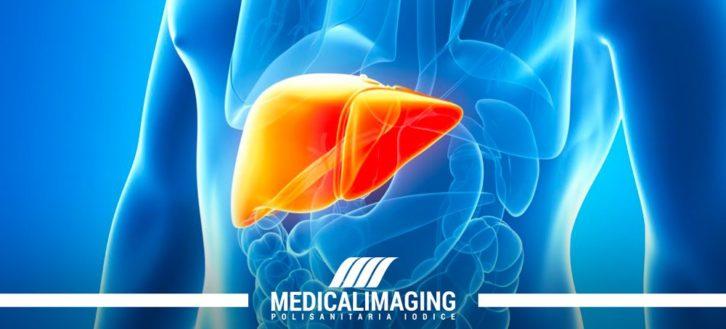 Le funzioni del fegato | 3 cose da sapere